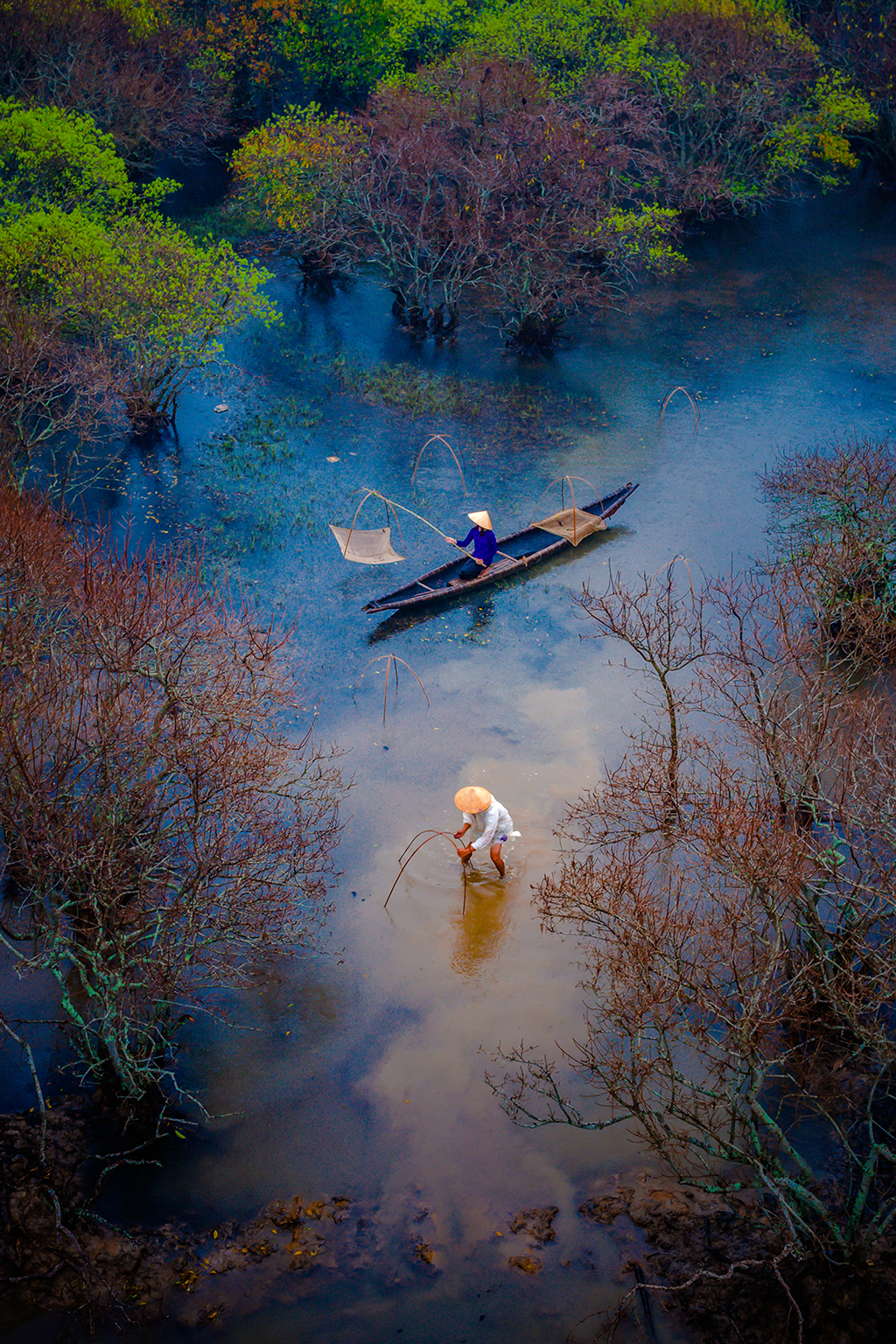 Currently, Ru Cha mangrove forest has been the favorite destination of many photographers