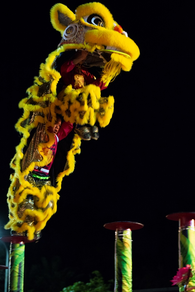 "A ""Mai Hoa Thung"" performance - one of the special items attracting viewers"