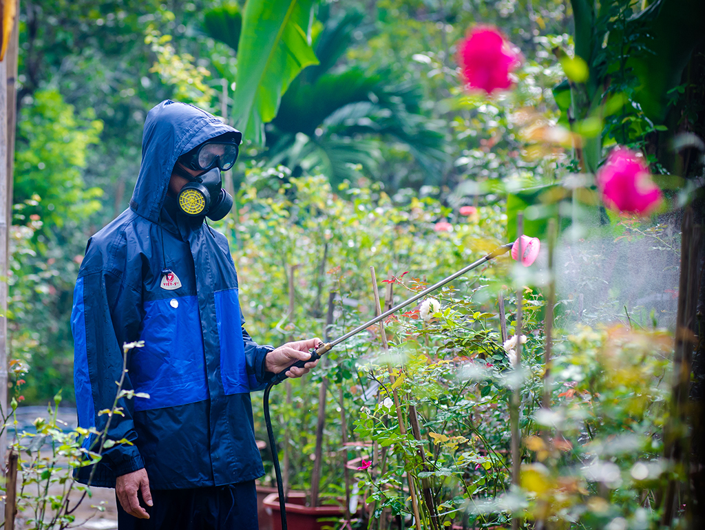 Providing nutrients and preventing pests