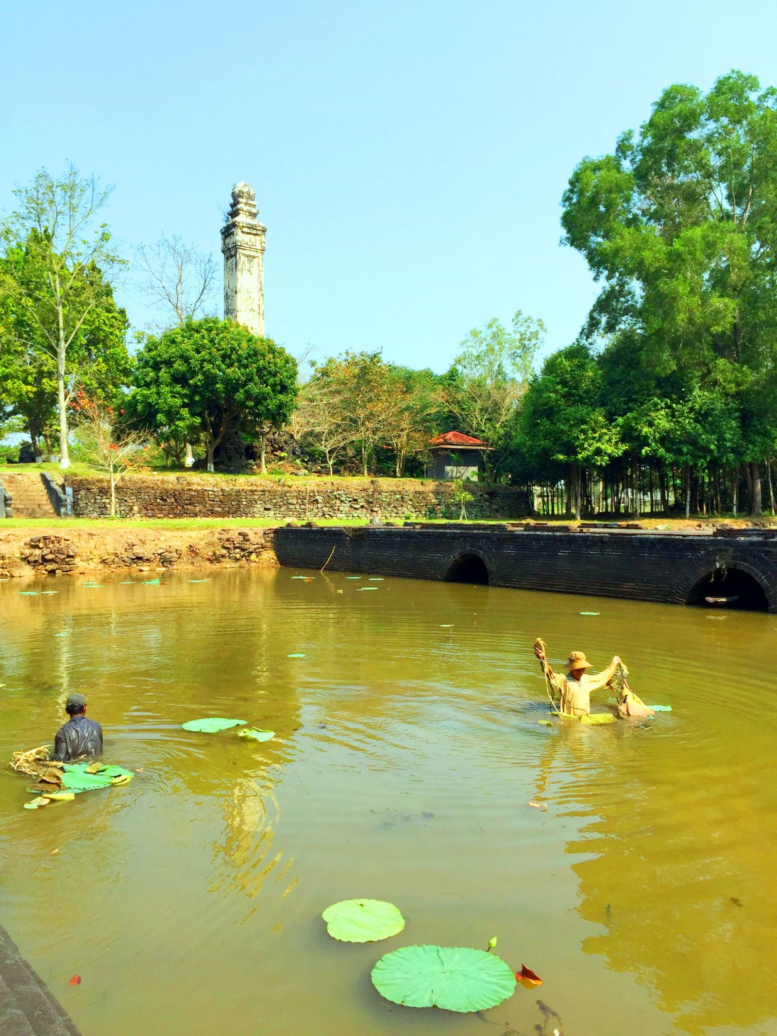 After An Hoa gate, the lake at Thieu Tri tomb was also planted with lotus. In its blooming season, the lotus will create more impression to the landscape here