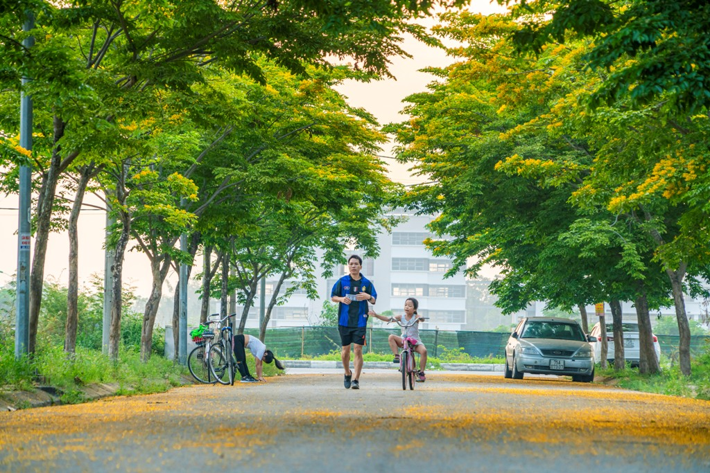 An adorable scenery of a family enlisting doing exercise in the early morning
