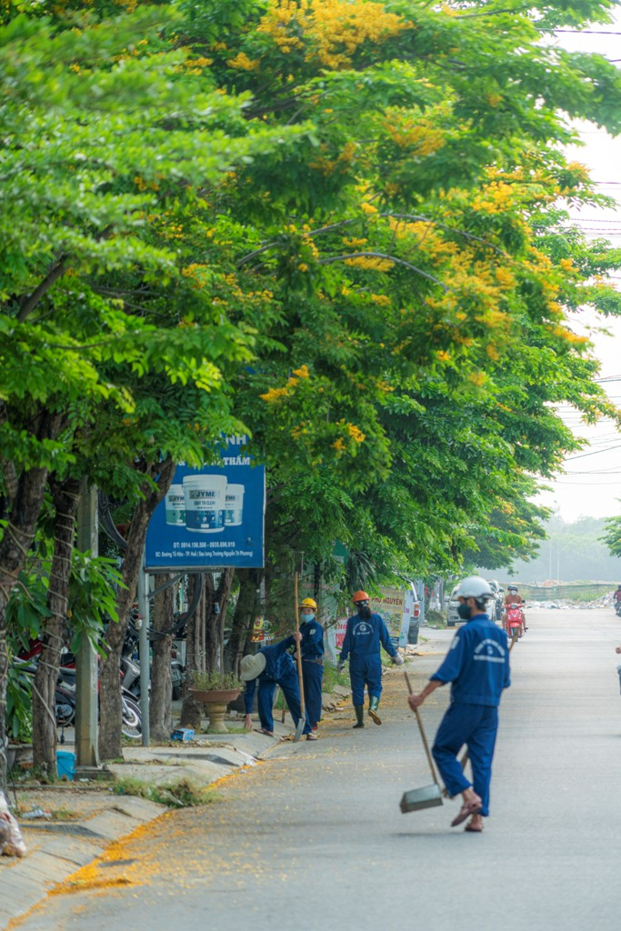 The sanitation workers on their duty on the streets that are yellow-dyed by the flower color