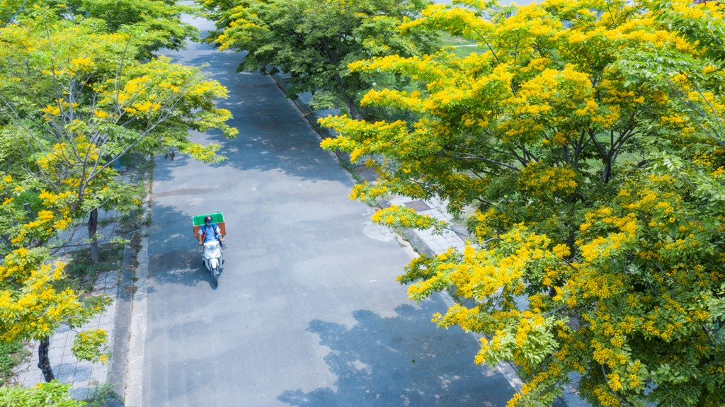 An aerial photo about a dreamlike scenery of a street in Xuan Phu new urban area