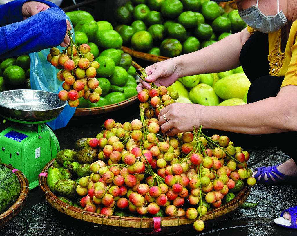 In the season of mulberry, the attractive bunches of mulberries are always set out on loads of street fruit vendors