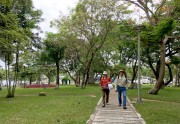 Trees and love of Hue people
