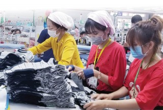 The textile and garment exports grow greatly