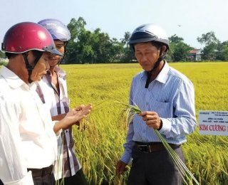 """Catching the trend, orientating to a """"smart"""" agriculture"""
