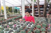 The boy with a passion for cactus